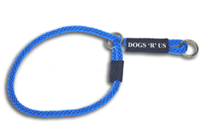 Personalized Slip Collar