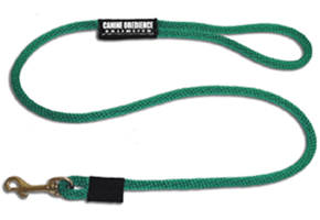 Personalized Standard Leash